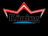 окна koning в минске по доступным ценам